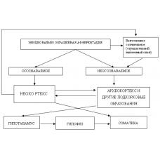 Научная объективизация гомеопатии
